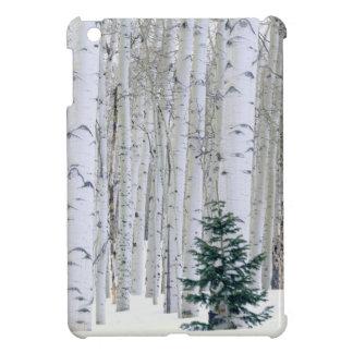 UTAH. USA. Aspen (Populus tremuloides) & Douglas iPad Mini Case