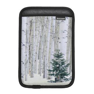 UTAH. USA. Aspen (Populus tremuloides) & Douglas iPad Mini Sleeve