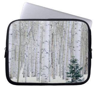 UTAH. USA. Aspen (Populus tremuloides) & Douglas Laptop Sleeve