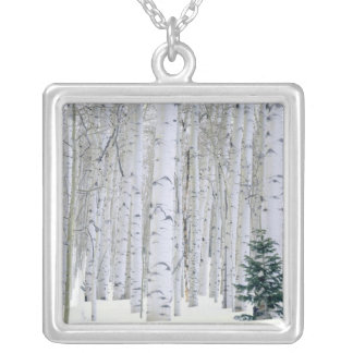 UTAH. USA. Aspen (Populus tremuloides) & Douglas Silver Plated Necklace