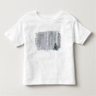 UTAH. USA. Aspen (Populus tremuloides) & Douglas Toddler T-Shirt