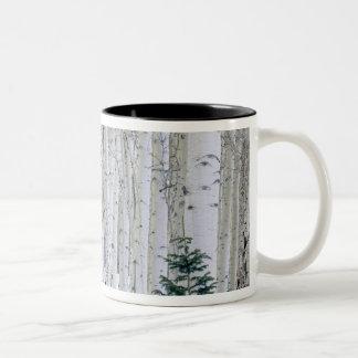 UTAH. USA. Aspen (Populus tremuloides) & Douglas Two-Tone Coffee Mug
