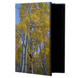 Utah. USA. Aspen Trees And Moon At Dusk iPad Air Cover