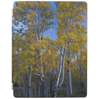 Utah. USA. Aspen Trees And Moon At Dusk iPad Cover