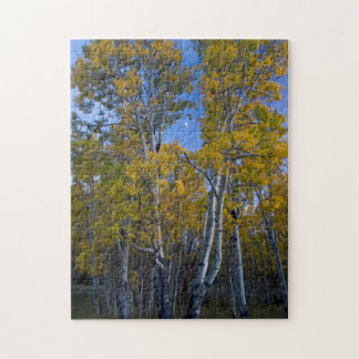 Utah. USA. Aspen Trees And Moon At Dusk Jigsaw Puzzle