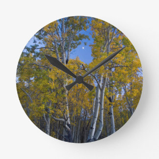 Utah. USA. Aspen Trees And Moon At Dusk Round Clock