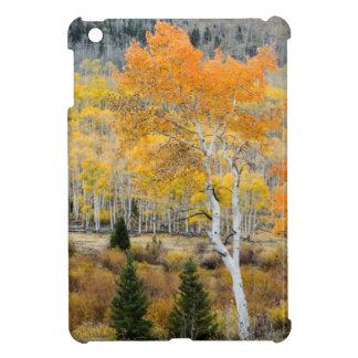 Utah, USA. Aspen Trees And Willow Thickets iPad Mini Case