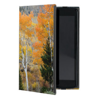 Utah, USA. Aspen Trees And Willow Thickets iPad Mini Cover