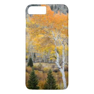 Utah, USA. Aspen Trees And Willow Thickets iPhone 8 Plus/7 Plus Case