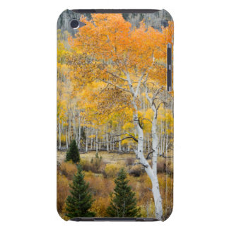 Utah, USA. Aspen Trees And Willow Thickets iPod Touch Case