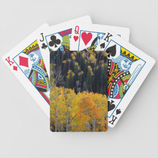 Utah. USA. Aspen Trees In Autumn On The Sevier Bicycle Playing Cards
