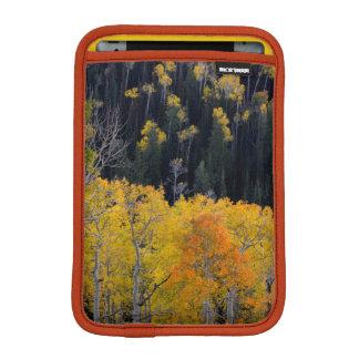 Utah. USA. Aspen Trees In Autumn On The Sevier iPad Mini Sleeve