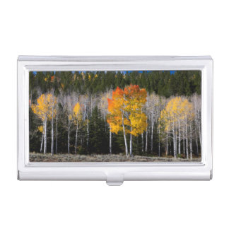 Utah, USA. Aspen Trees (Populus Tremuloides) 2 Business Card Holder