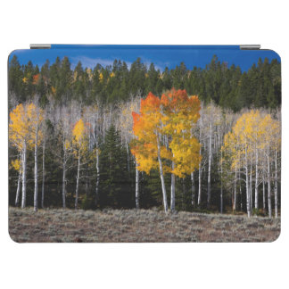 Utah, USA. Aspen Trees (Populus Tremuloides) 2 iPad Air Cover