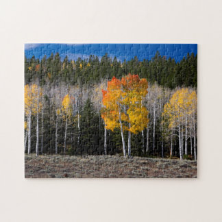 Utah, USA. Aspen Trees (Populus Tremuloides) 2 Jigsaw Puzzle