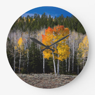 Utah, USA. Aspen Trees (Populus Tremuloides) 2 Large Clock