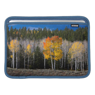 Utah, USA. Aspen Trees (Populus Tremuloides) 2 MacBook Sleeve