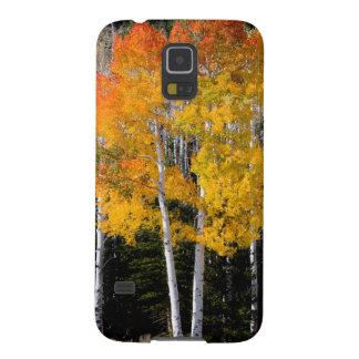 Utah, USA. Aspen Trees (Populus Tremuloides) 3 Galaxy S5 Cover