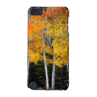 Utah, USA. Aspen Trees (Populus Tremuloides) 3 iPod Touch (5th Generation) Case