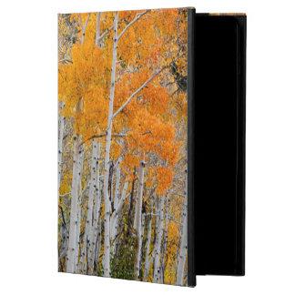 Utah, USA. Aspen Trees (Populus Tremuloides) 4 Cover For iPad Air