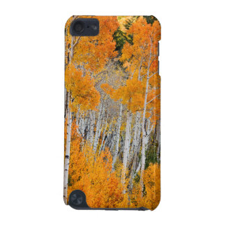 Utah, USA. Aspen Trees (Populus Tremuloides) 4 iPod Touch (5th Generation) Covers