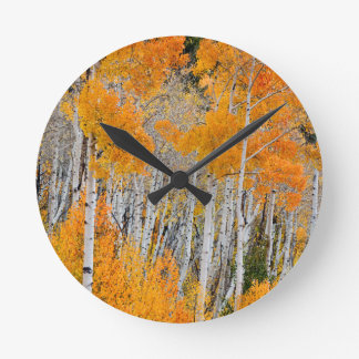 Utah, USA. Aspen Trees (Populus Tremuloides) 4 Wall Clock