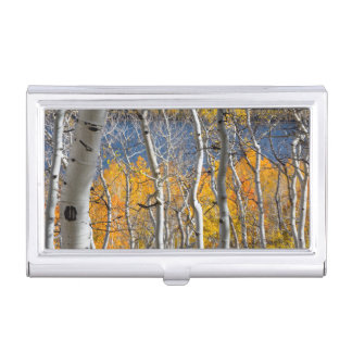Utah, USA. Aspen Trees (Populus Tremuloides) Business Card Holder