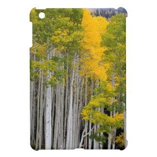 Utah. USA. Aspen Trees (Populus Tremuloides) iPad Mini Case