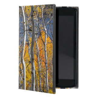 Utah, USA. Aspen Trees (Populus Tremuloides) iPad Mini Cover