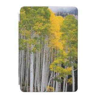 Utah. USA. Aspen Trees (Populus Tremuloides) iPad Mini Cover