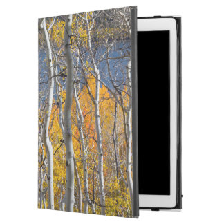 "Utah, USA. Aspen Trees (Populus Tremuloides) iPad Pro 12.9"" Case"