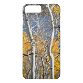 Utah, USA. Aspen Trees (Populus Tremuloides) iPhone 8 Plus/7 Plus Case
