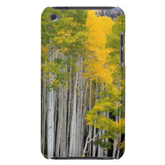 Utah. USA. Aspen Trees (Populus Tremuloides) iPod Case-Mate Cases