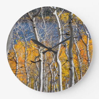 Utah, USA. Aspen Trees (Populus Tremuloides) Large Clock