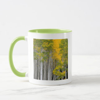 Utah. USA. Aspen Trees (Populus Tremuloides) Mug