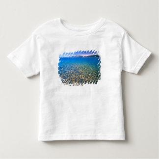 UTAH. USA. Clear water of Bear Lake reveals T Shirts