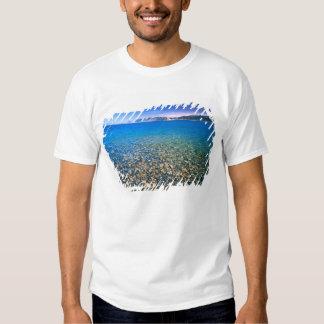 UTAH. USA. Clear water of Bear Lake reveals Tshirts