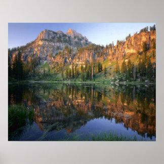 UTAH. USA. Mt. Magog reflected in White Pine Poster