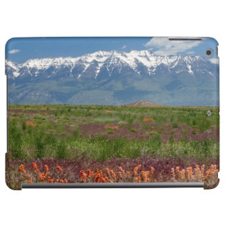 Utah, USA. Mt. Timpanogos Rises Above