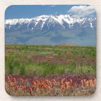 Utah, USA. Mt. Timpanogos Rises Above Beverage Coaster