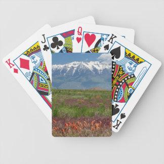 Utah, USA. Mt. Timpanogos Rises Above Bicycle Playing Cards