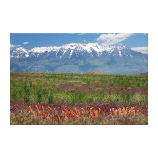 Utah, USA. Mt. Timpanogos Rises Above Canvas Print