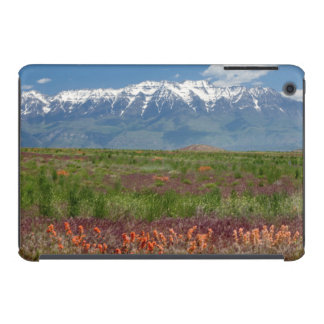 Utah, USA. Mt. Timpanogos Rises Above iPad Mini Retina Cover