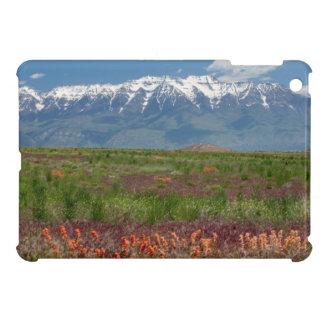 Utah, USA. Mt. Timpanogos Rises Above Case For The iPad Mini