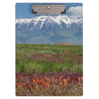 Utah, USA. Mt. Timpanogos Rises Above Clipboard