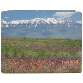 Utah, USA. Mt. Timpanogos Rises Above iPad Cover