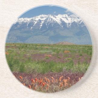 Utah, USA. Mt. Timpanogos Rises Above Drink Coasters