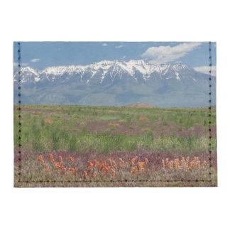 Utah, USA. Mt. Timpanogos Rises Above Tyvek® Card Wallet