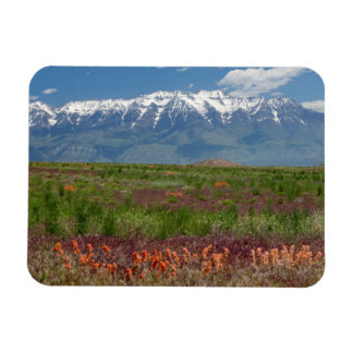 Utah, USA. Mt. Timpanogos Rises Above Rectangle Magnets