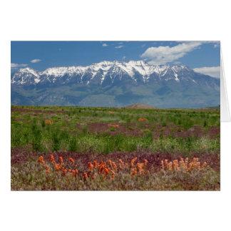 Utah, USA. Mt. Timpanogos Rises Above Greeting Card